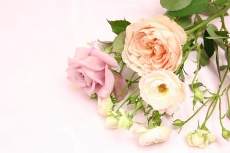 少人数結婚式。両親への花束贈呈は、する?